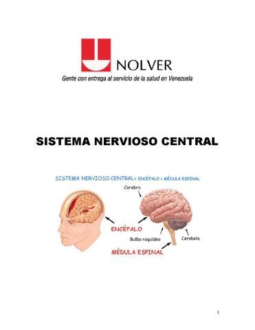 Anatomia y Fisiologia del Sistema Nervioso Central by Nolver Nolver ...