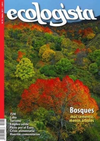 Resultado de imagen para Ecologistas cuidando bosques