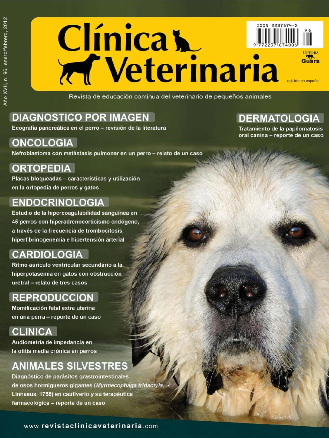Clinica Veterinaria by Clinica Veterinaria - issuu