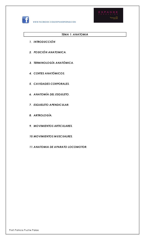 Tema 1 Anatomía. by expande formacion - issuu