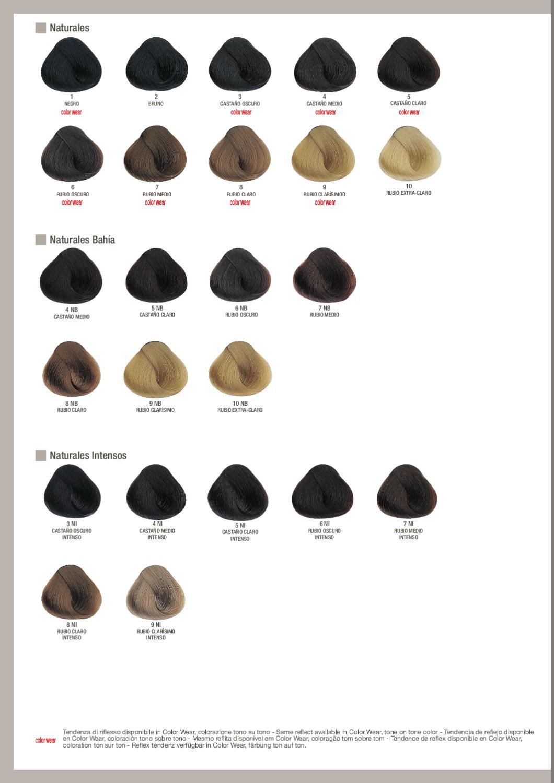 Carta De Colores Evolution Of The Color 179 By Alfaparf