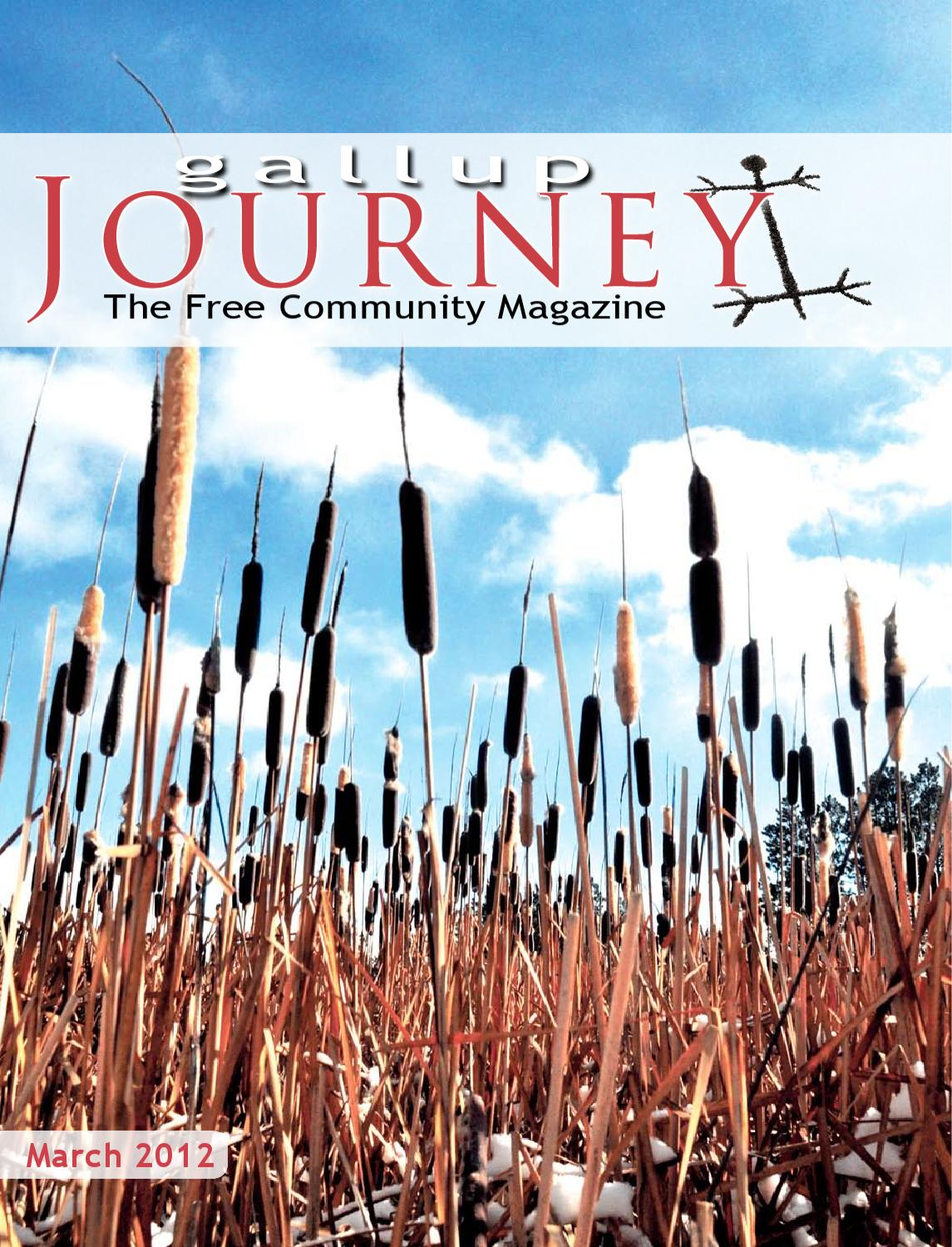 Gallup Journey March 2012 By Issuu Schematic Muscle Stimulator Or Zapper Tens Isaac Blog