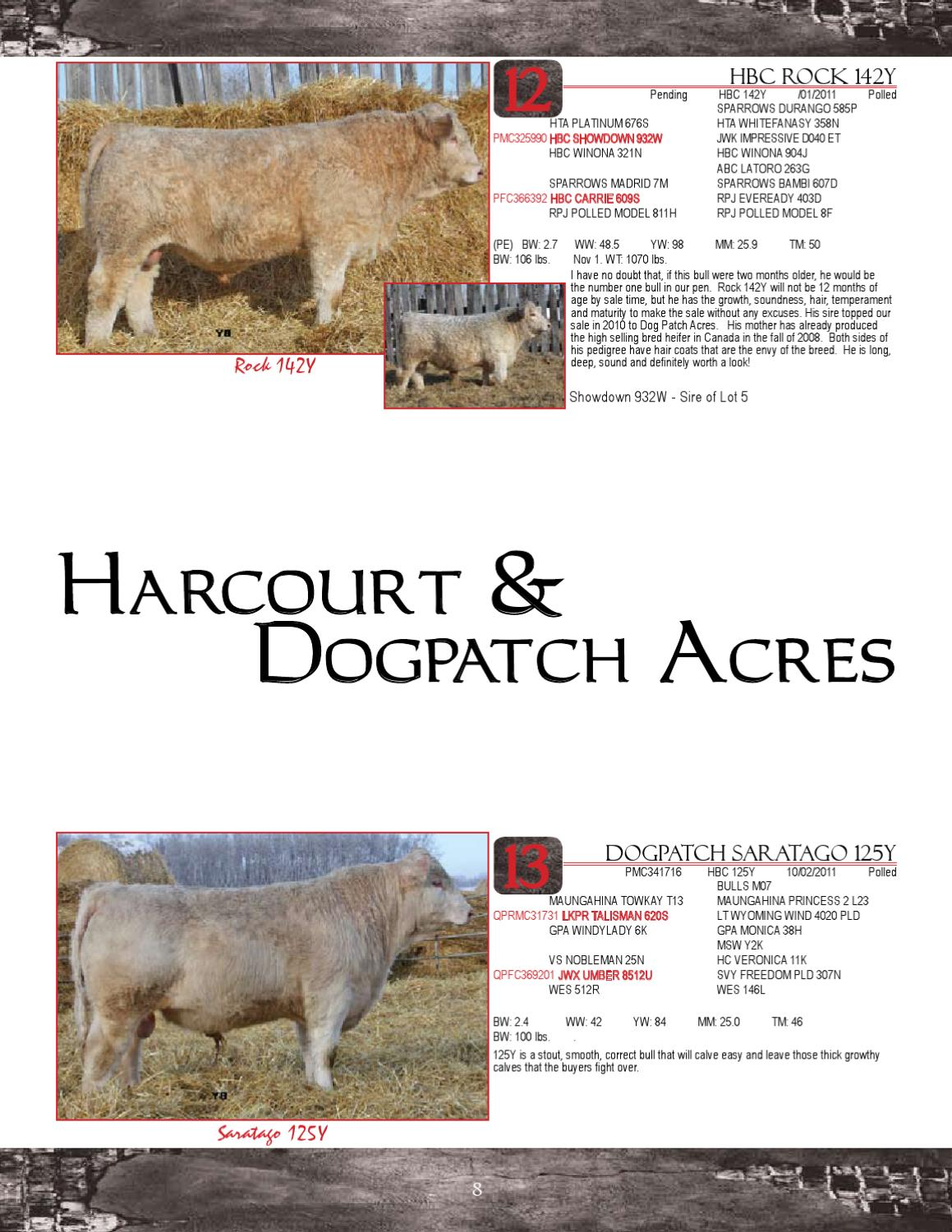 Best Of The Breeds by Today's Publishing Inc  - issuu