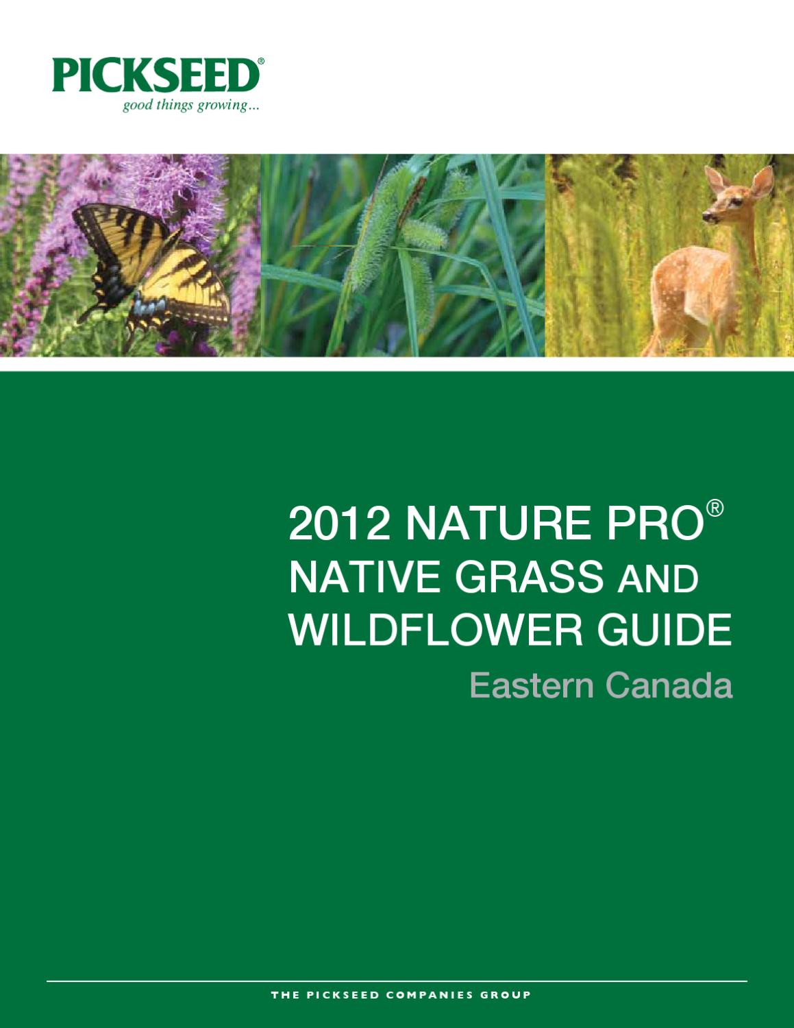 2012 NATURE PRO ®NATIVE GRASS ANDWILDFLOWER GUIDE by Ian