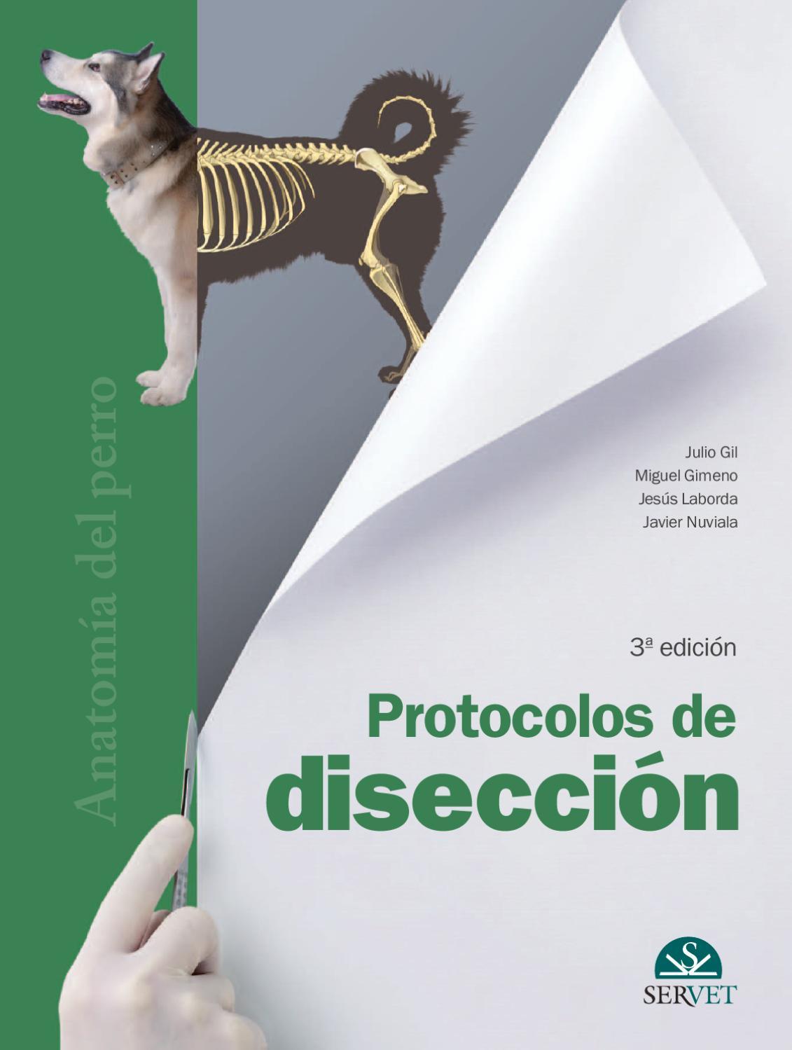 Protocolos de disección, 3ª edición. Anatomía del perro by Grupo ...