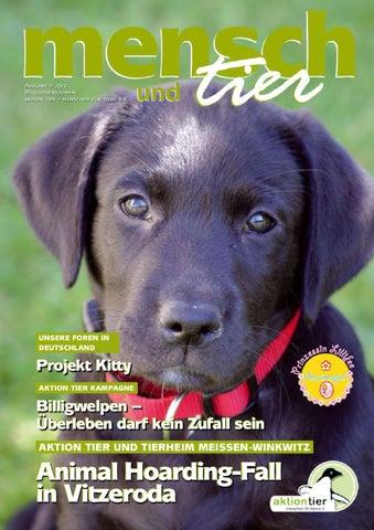 Achtung Hund,hundeschild,warnschild,gravurschild,12 X 8 Cm,freilaufender Hund Haustierbedarf