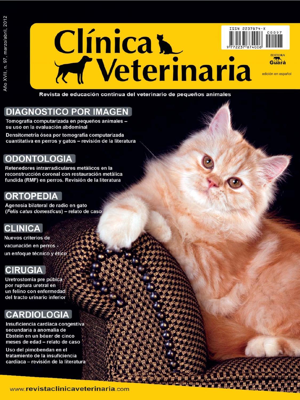 Clínica Veterinaria By Clinica Veterinaria Issuu