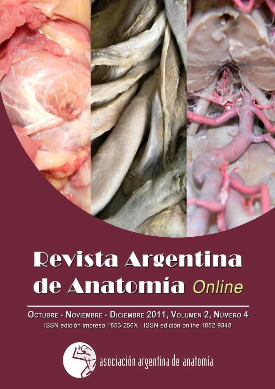 Revista Argentina de Anatomía Online 2011; 2(4): 101-136. by Nicolas ...