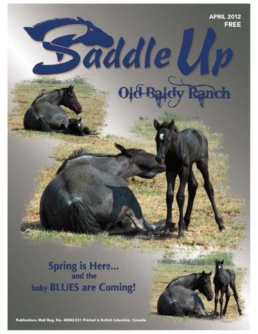 c9d4db60733b Saddle Up April 12 by Saddle Up magazine - issuu