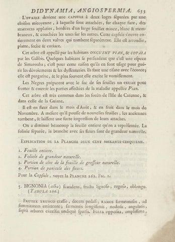Histoire Des Plantes De La Guiane Francoise By Bibliotheque