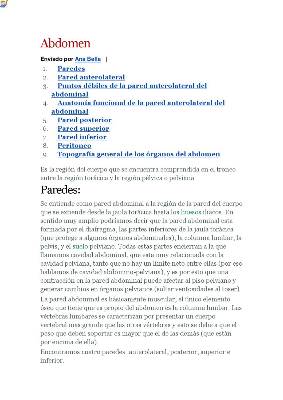 anatomia del abdomen by jose garcia - issuu