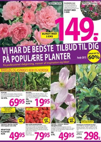/Ellengaard%5B1%5D by Christian Fauersgaard - Issuu