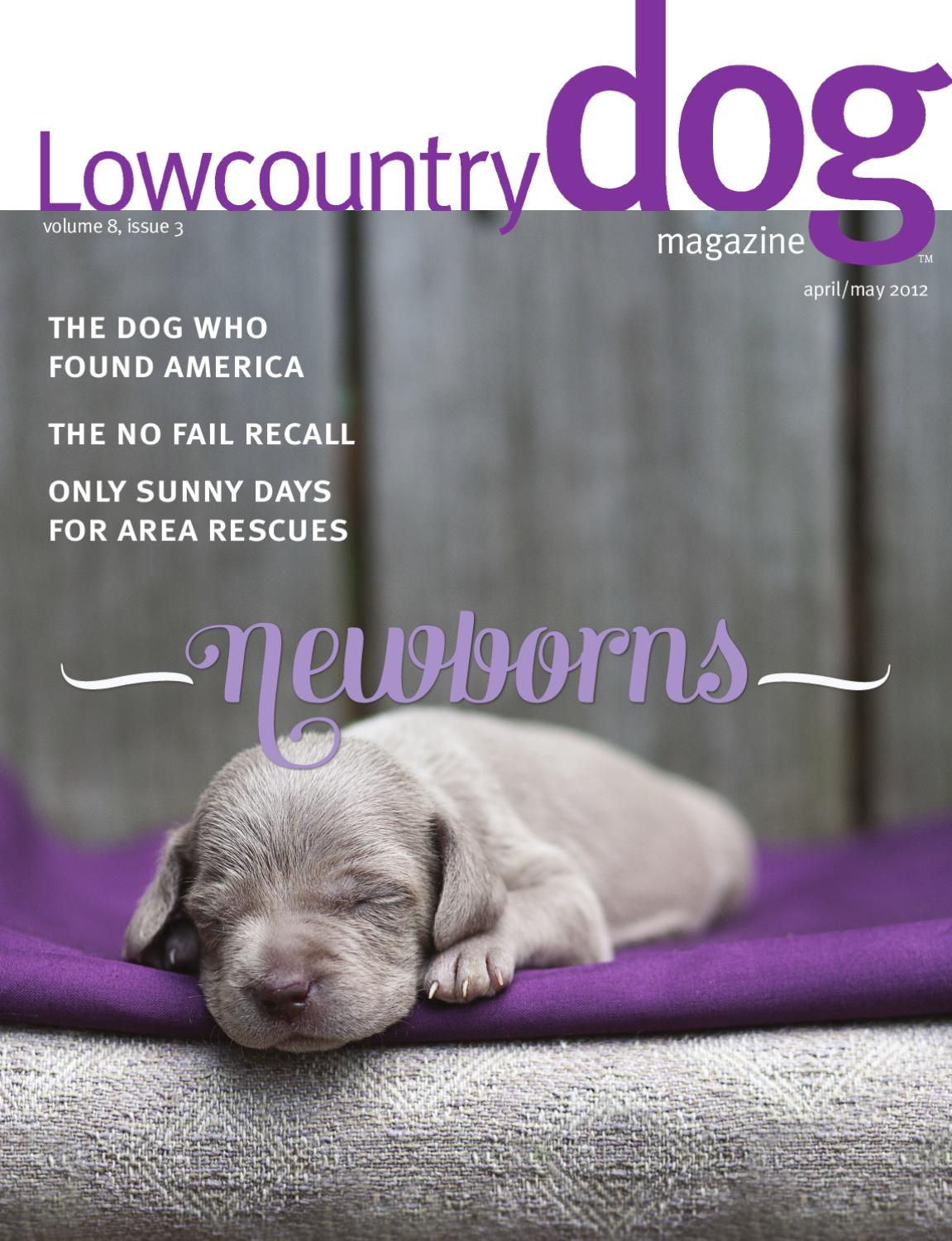 Lowcountry Dog Magazine April/May 2012 by Leah England - issuu