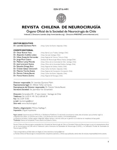 big sale 0924d 45be2 Revista Neurocirugía numero 28 by IPX LTDA - issuu