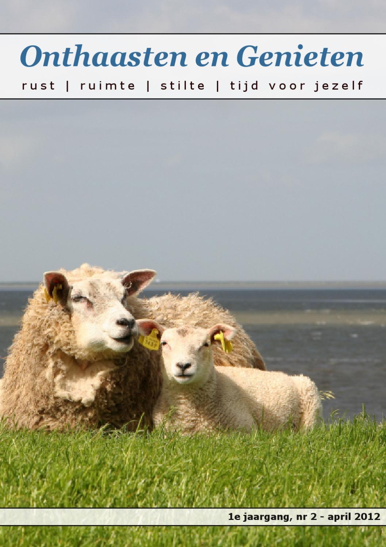 Afbeelding van online Magazine 'Onthaasten en Genieten' - Lentenummer 2012