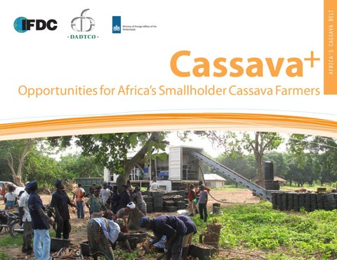 opportunities in the industrial cassava market Proposed industrial development by region 89  comparison of domestic and world market prices for cassava chips, cassava starch and  opportunities and .