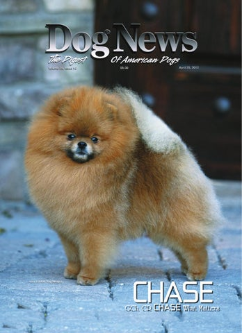 Dog News April 20 2012 By Dog News Issuu