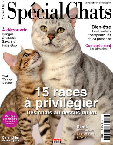 Special Chats 16 by Fabien Tourneur - issuu f920476a95cf