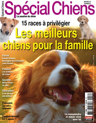 Special chiens 15 by fabien tourneur issuu special chiens 16 fandeluxe Image collections