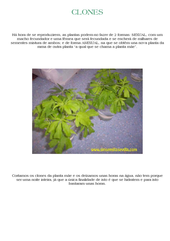 Dorable Da Forma A Las Uñas Imágenes Colección - Ideas de Pintar de ...