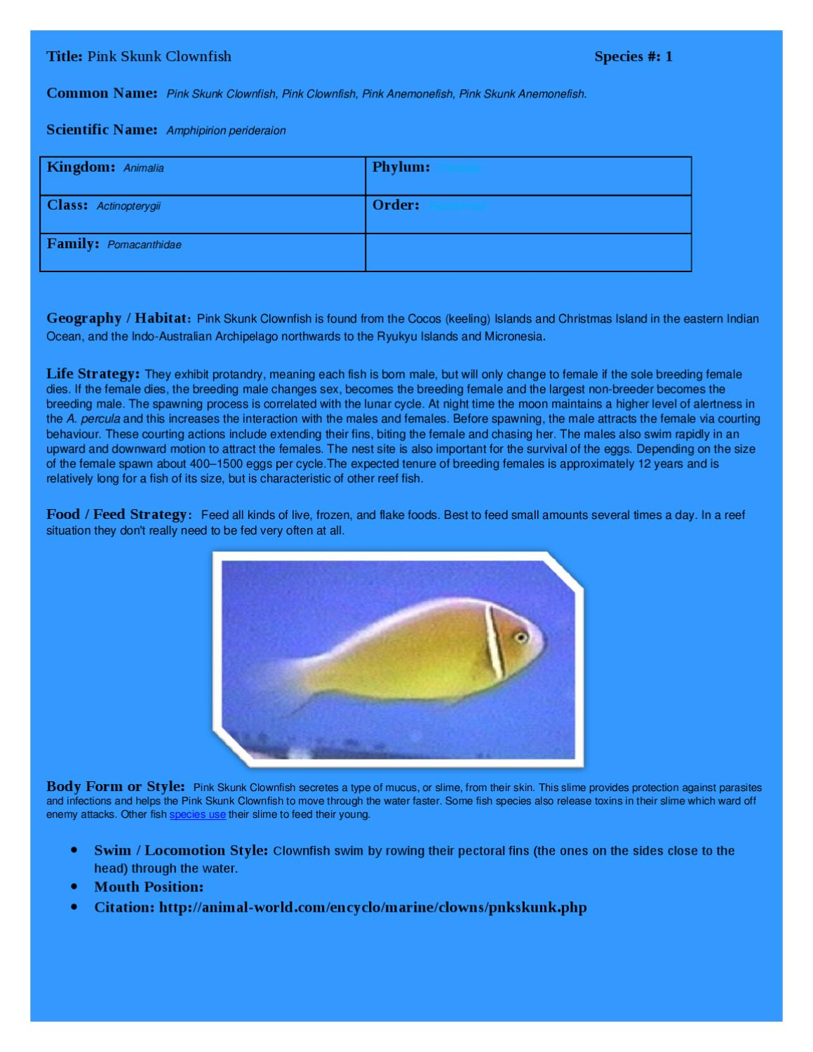 Image of: Organisms Dokumentips Fish Id Research Project By Cortez Lockhart Issuu