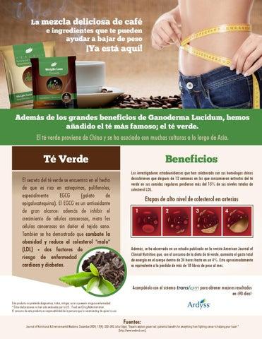 cafe de ganoderma para bajar de peso