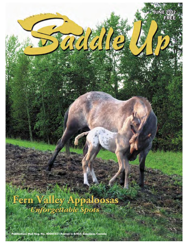 Saddle Up June 2012 by Saddle Up magazine - issuu b57fdfed63