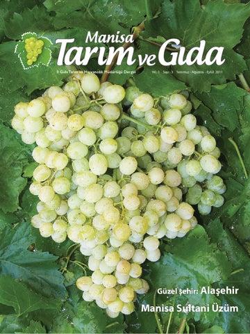 Yabani üzümler: parlak bir asmanın ekilmesi ve bakımı