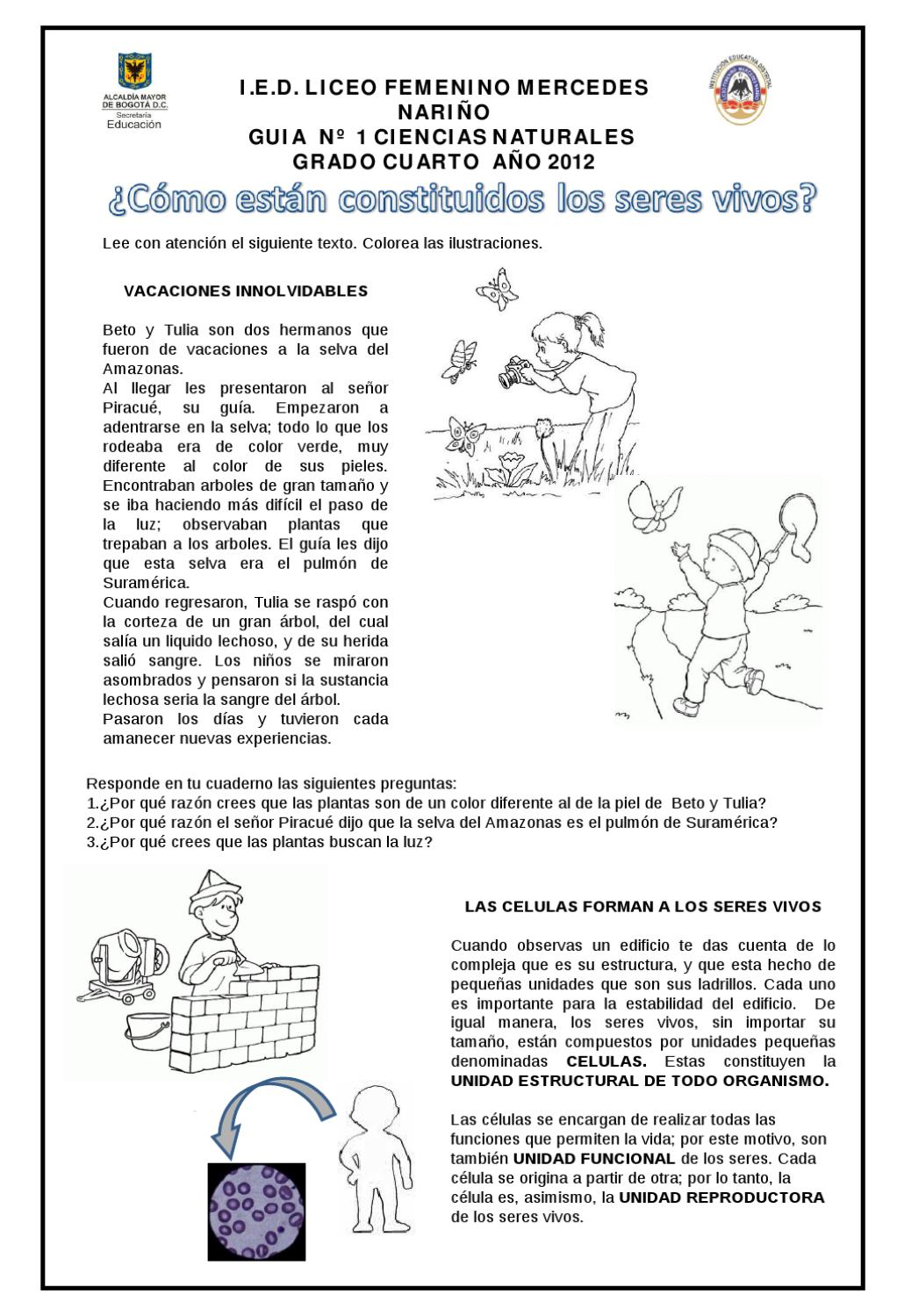 Ciencias Cuarto Grado By Sandra Montaña Issuu