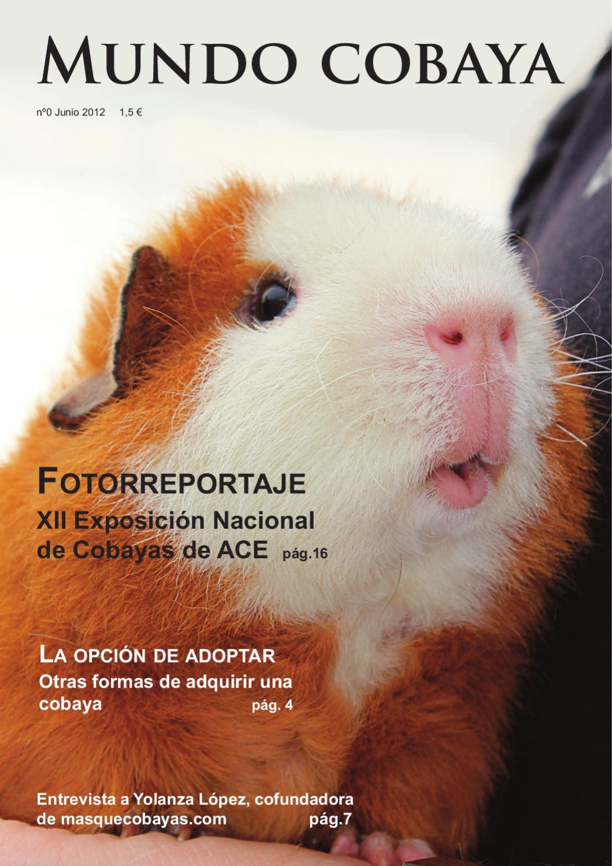 Revista mundo cobaya by paula ordu a issuu - Informacion de cobayas ...