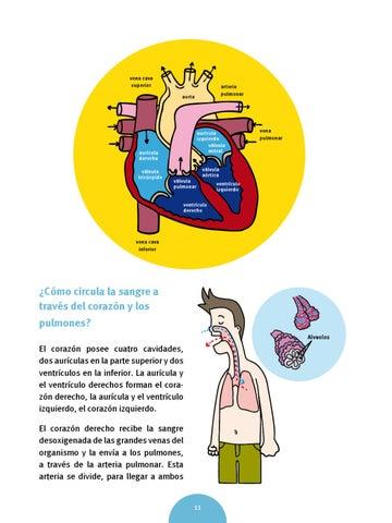 Cómo hacer más Hipertensión cardiaca haciendo menos