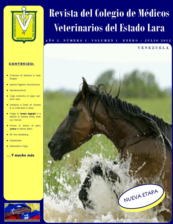 Año 2. Número 1 by Revista del Colegio Médicos Veterinarios - issuu