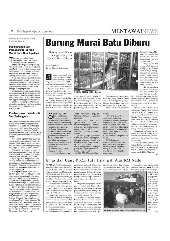 243 by Puailiggoubat Mentawai - issuu