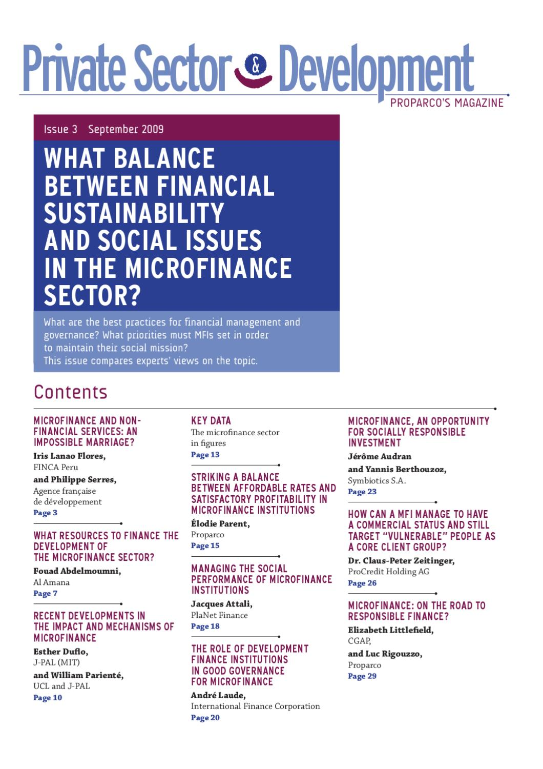 What balance between financial sustainability and social issues in ...
