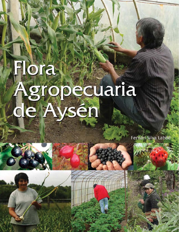 FLORA AGROPECUARIA DE AYSEN by Fernan Silva - issuu