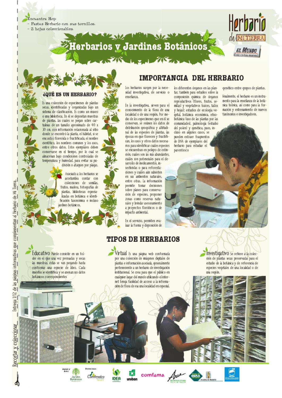 Herbario de Mi Tierra 1er Sem 2011 by Periódico El Mundo - issuu