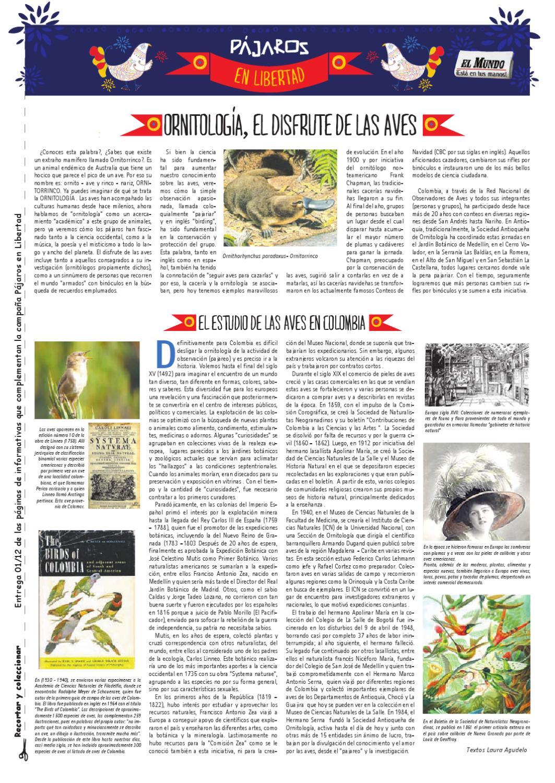 Pájaros en Libertad 2o Sem 2011 by Periódico El Mundo - issuu 3e61c6f2f0c