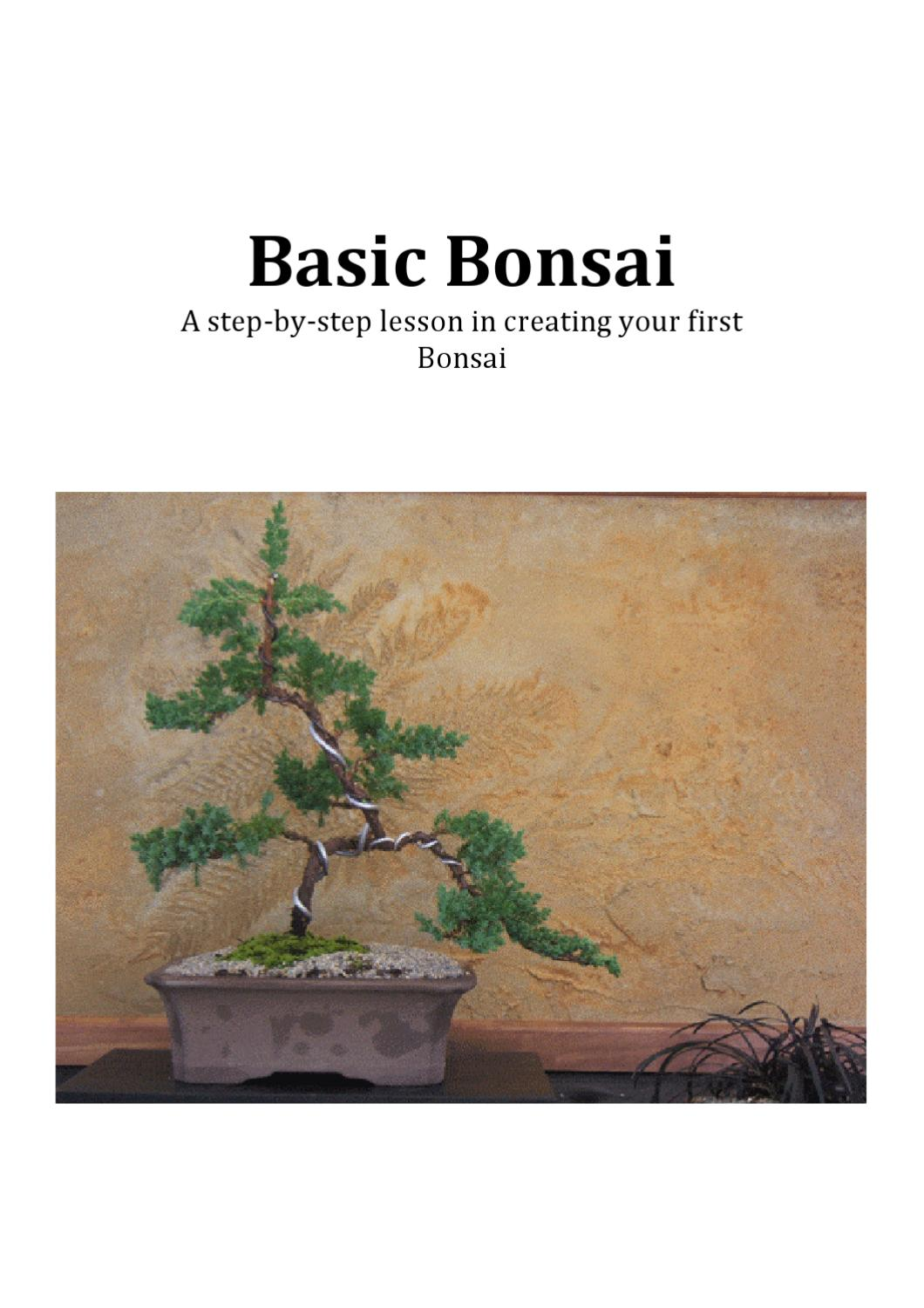 Basic Bonsai By Mark Williams Issuu Wiring Your Tree