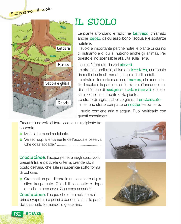 Baffo e coda 3b by elvira ussia issuu for Puoi ottenere un prestito per la terra