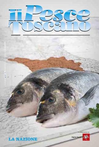 un sacco di pesci che risalgono a vista
