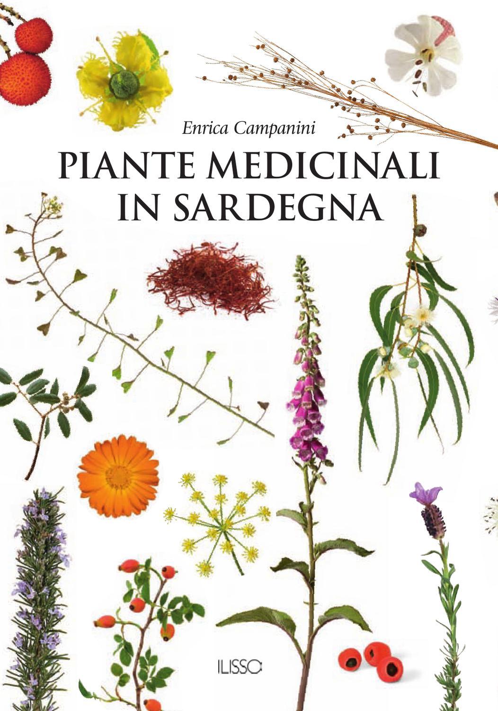 piante medicinali per fluidificare il sangue