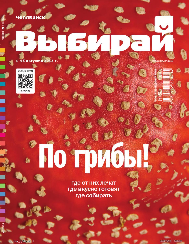 f630d348f15f Выбирай. Челябинск №15 (289) на 1-15 августа 2012 г.