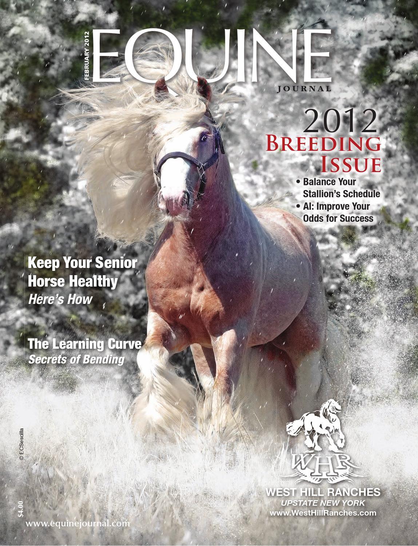 1e3c24ed557 Equine Journal (February 2012) by Equine Journal - issuu