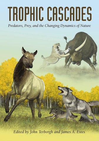 Trophic Cascades Predators Prey And The Changing Dynamics Of