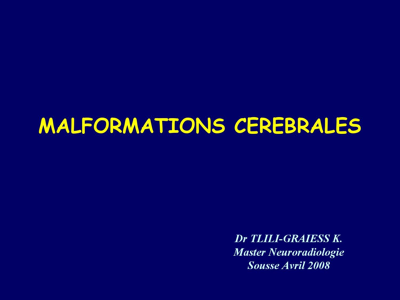 Malformations Cerebrales By Ben Chir Issuu
