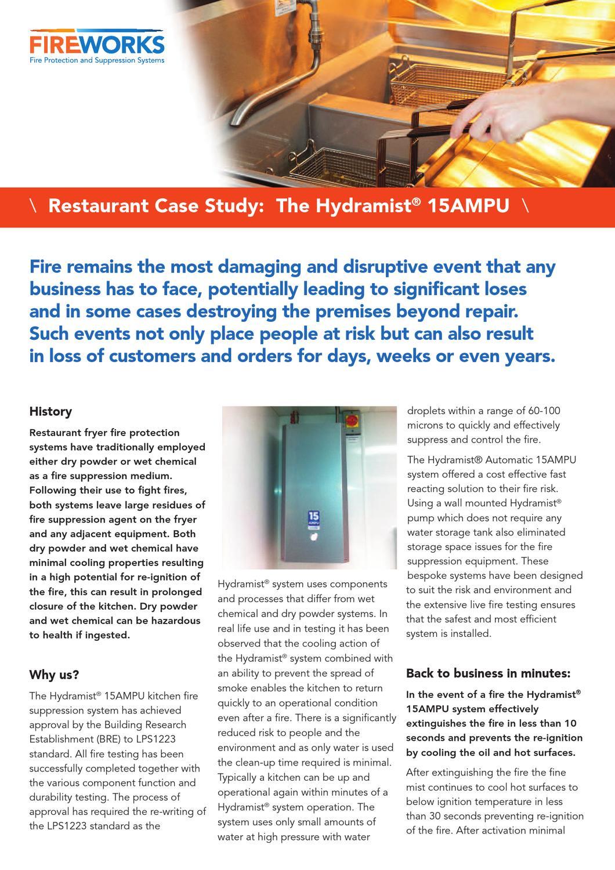 Fireworks restaurant case study by wisdom design issuu