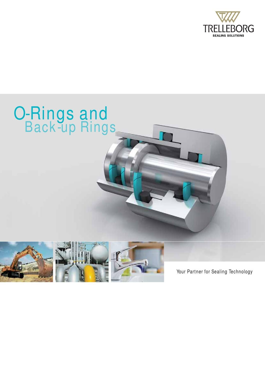 O ring 2012 viton fda 70 sh
