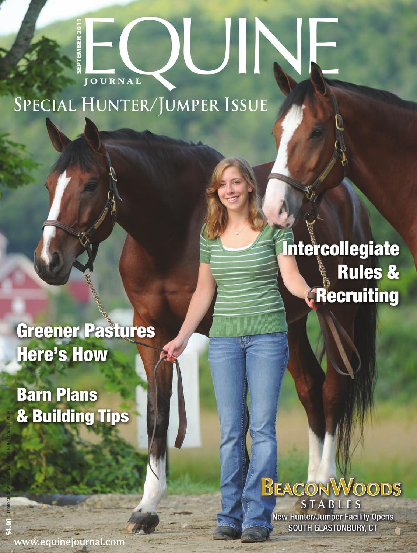 WESTERN HORSE TRACK BRIDLE HALTER STRAP GOODS ACCESSORIE SNAFFLE HANGER 111