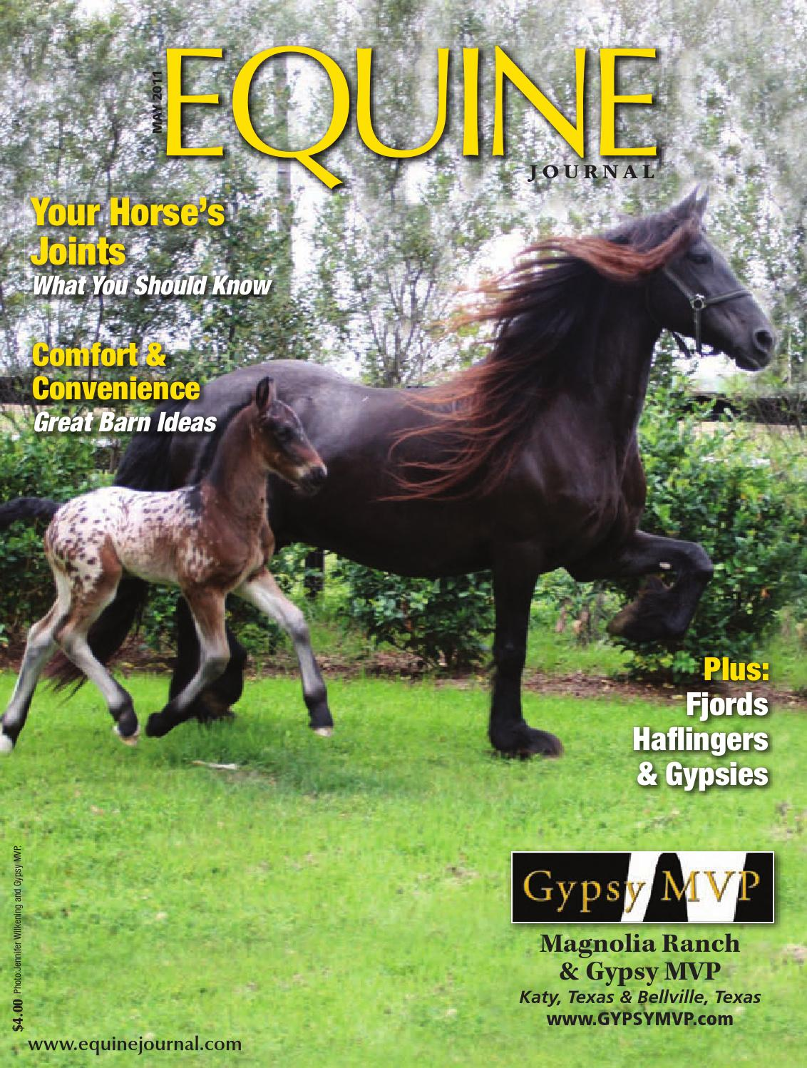 d53f6d4c171 Equine Journal (May 2011) by Equine Journal - issuu