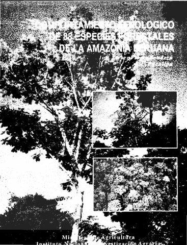 comportamiento fenol243gico de 88 especies forestales by